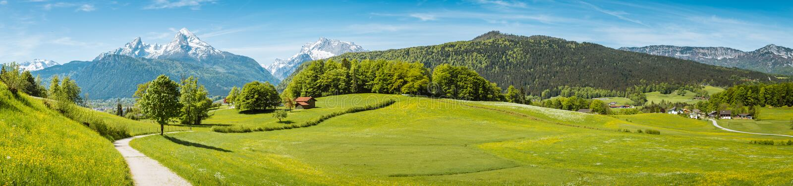 Idyllic spring landscape in the Alps with meadows and flowers royalty free stock image
