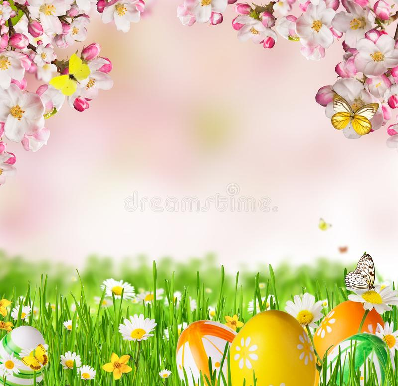 Idyllic spring meadow with Easter eggs and butterflies with blossoms. Spring concept with copyspace stock image