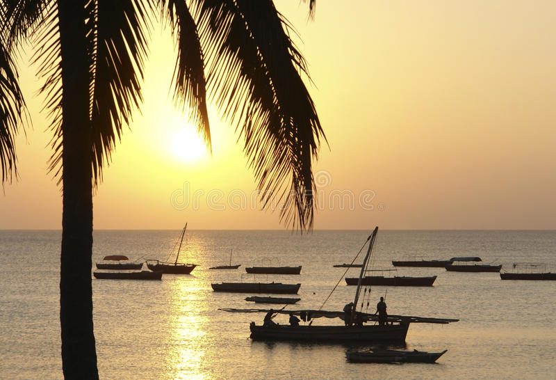 Idyllic sundown in Africa. Pictoral sundown in Zanzibar with palm tree and boats royalty free stock image