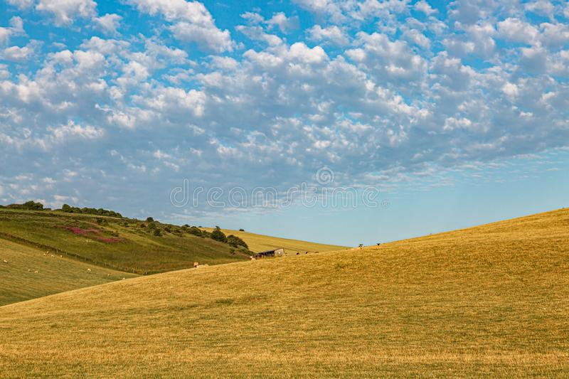 An Idyllic Sussex Landscape. Rolling hills in the Sussex countryside on a sunny summers morning royalty free stock images