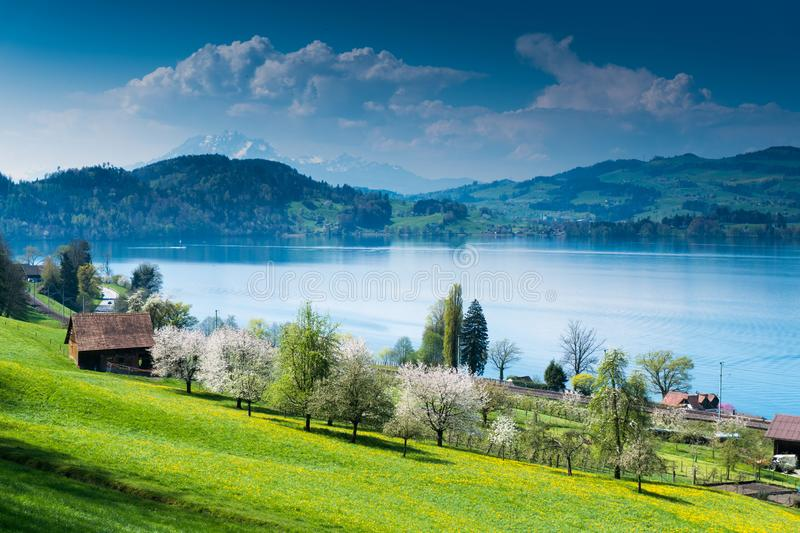 Idyllic Swiss country mountain landscape with farms lake and mountains in the distance. View of picturesque Swiss mountain and lake landscape at the Zugersee royalty free stock photo