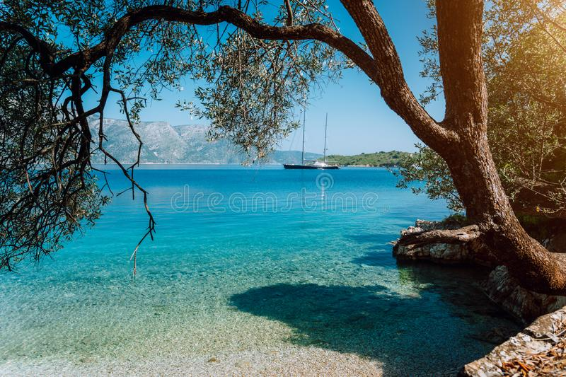 Idyllic tranquil turquoise bay view framed with old olive tree. Luxury yacht in the distance. Summer beach vacation relaxation royalty free stock photos