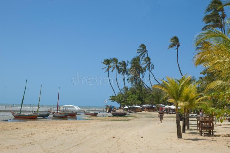 Idyllic tropical beach royalty free stock photography