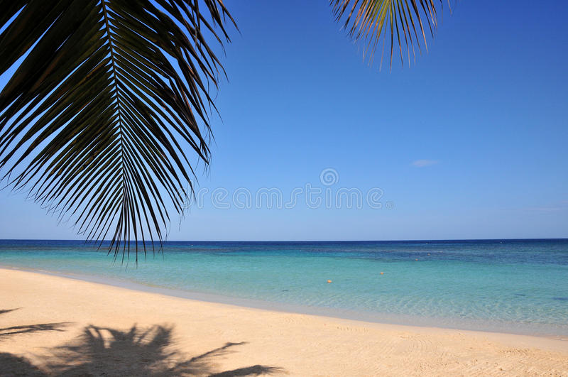 Download Idyllic tropical beach stock photo. Image of summer, outdoors - 14359896