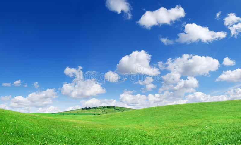 Idyllic view, green field and the blue sky with white clouds. Idyllic grassland, spring landscape, rolling green fields, blue sky and white clouds in the royalty free stock photos