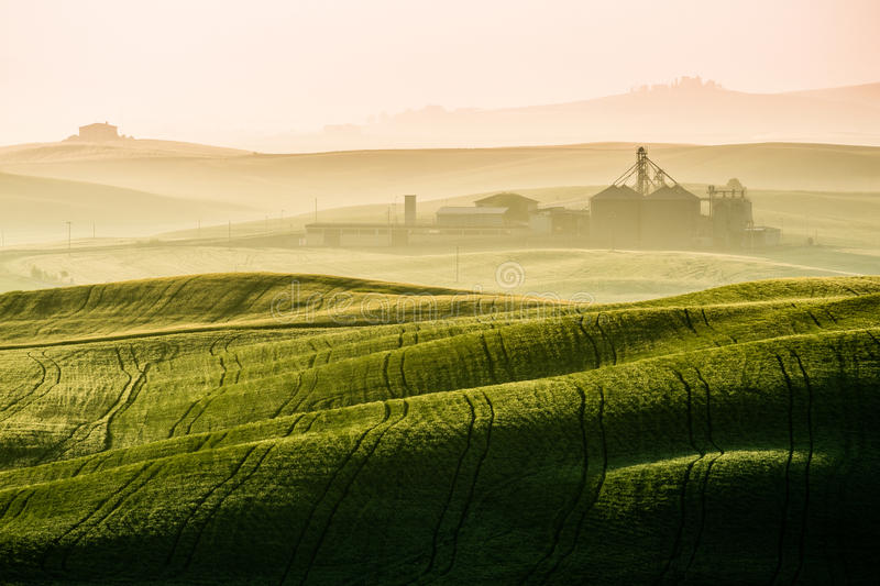 Idyllic view of hilly farmland in Tuscany. In beautiful morning light stock photo