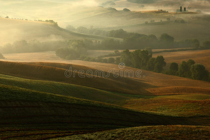 Idyllic view of hilly farmland in Tuscany in beautiful morning light, Italy stock photos