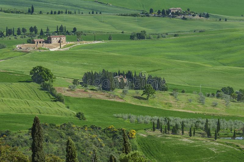 Rural landscape in Tuscany, Italy stock images
