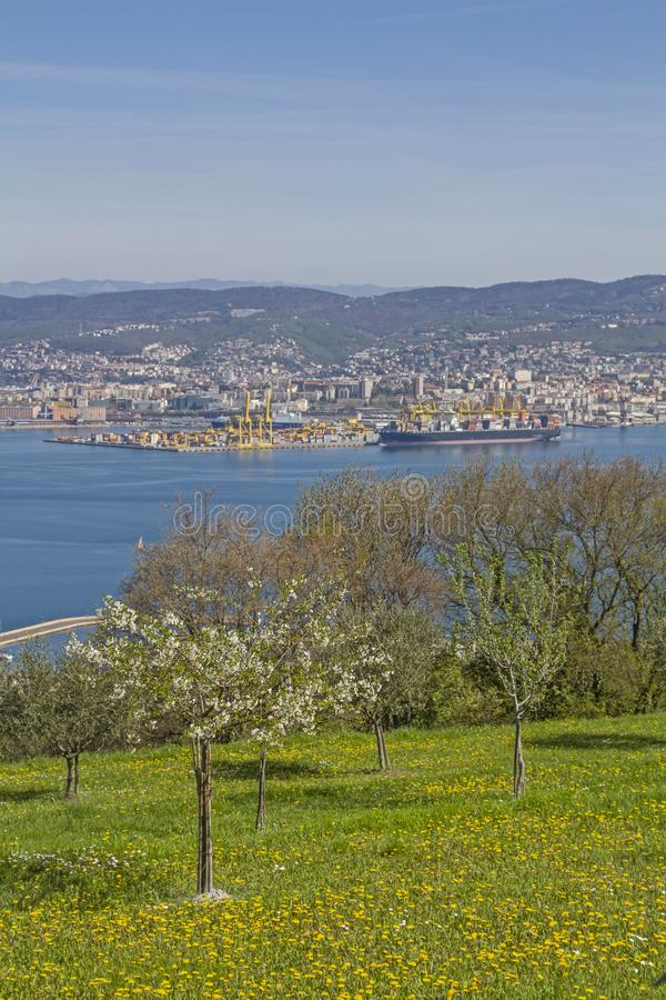 Idyllic view of Trieste royalty free stock photo