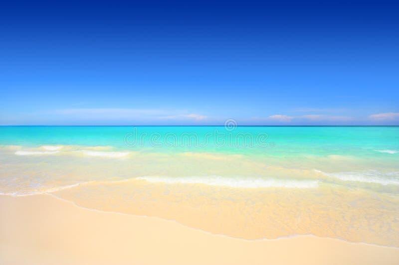 Download Idyllic White Sand Tropical Beach Stock Photo - Image: 10718380