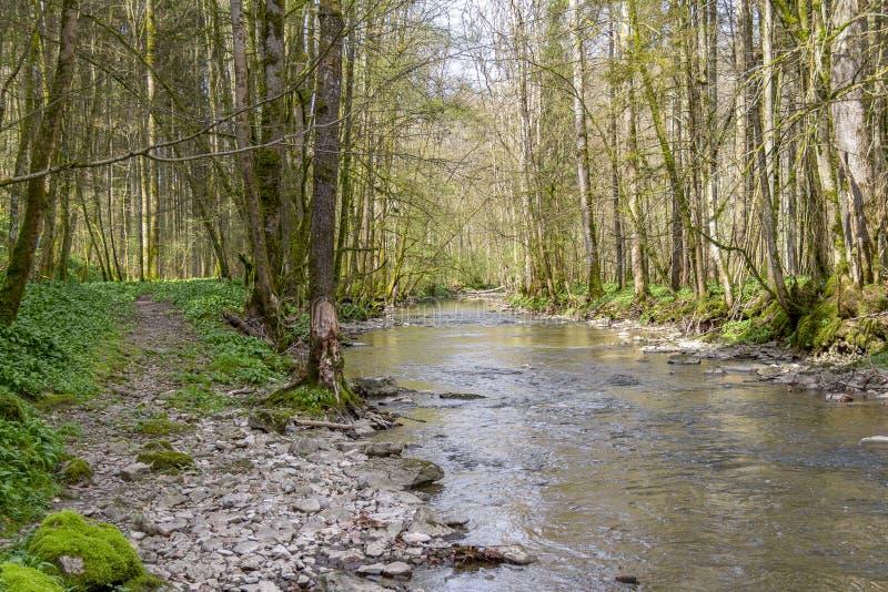 Idylliczna rzeka przy wiosna czasem obrazy stock