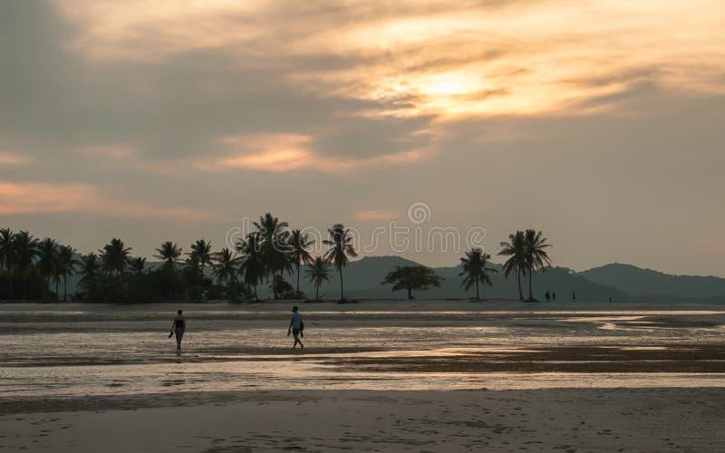 Idylliczna tropikalna plaża z pięknym drzewkiem palmowym i białym piaskiem obrazy stock