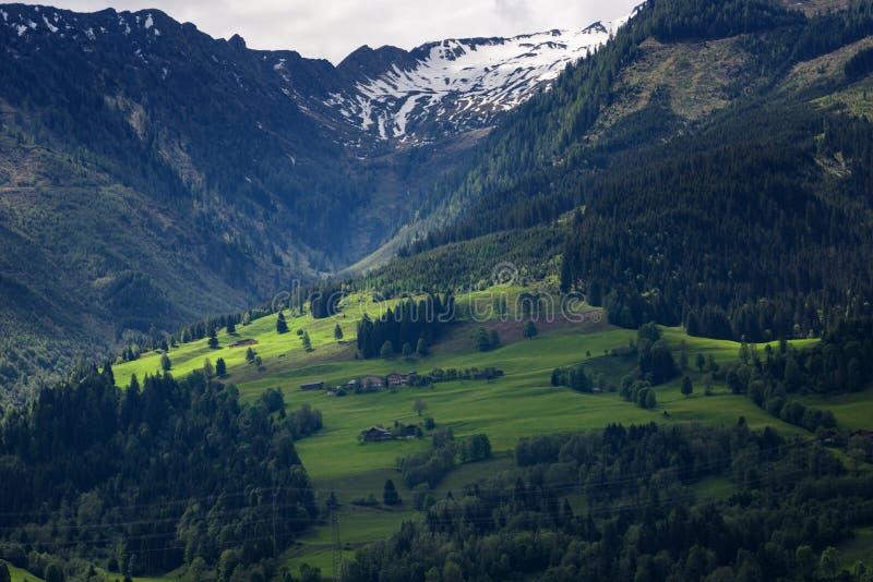 Idylliczny krajobraz w Alps w wiośnie z tradycyjnym halnym szaletem i świeżą zieloną górą wypasa z kwiatami obrazy royalty free