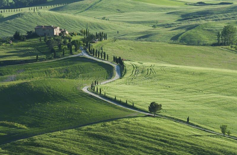Idylliczny krajobraz w Pienza, Tuscany, Włochy zdjęcia stock
