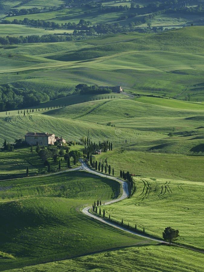Idylliczny krajobraz w Tuscany, Włochy zdjęcia royalty free