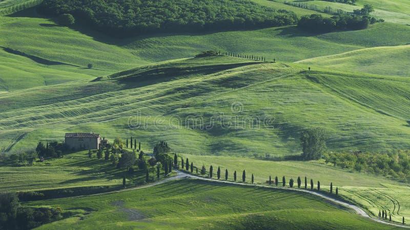 Idylliczny krajobraz w Tuscany, Włochy obrazy royalty free