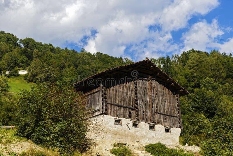 Idylliczny lato krajobraz w Alps z świeżą zielenią obrazy stock
