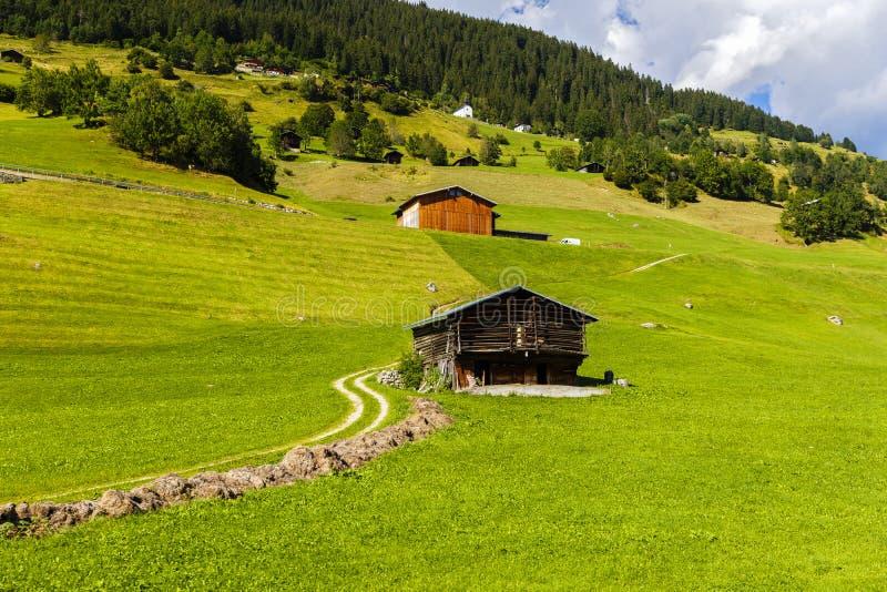 Idylliczny lato krajobraz w Alps z świeżą zielenią zdjęcie royalty free
