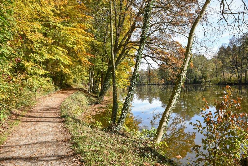 Idylliczny przejście along cumuje stawu ebersberg, górny bavaria w Oct obraz stock