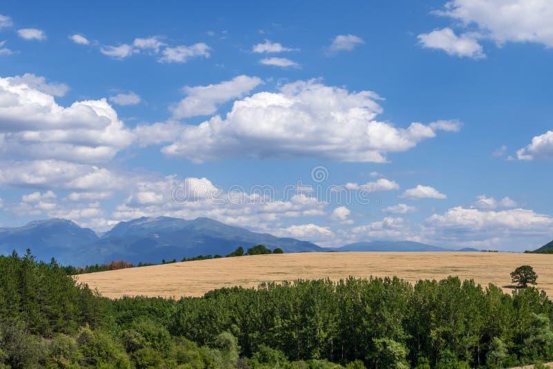 Idylliczny wiejski krajobraz na słonecznym dniu obraz royalty free