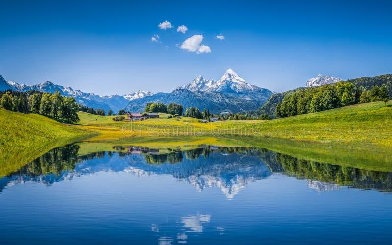 Idyllisch de zomerlandschap met duidelijk bergmeer in de Alpen stock foto's