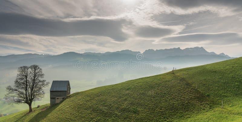 Idyllisch en vreedzaam berglandschap met een afgezonderde houten schuur en een eenzame boom op een grasrijke helling en een grote stock afbeeldingen