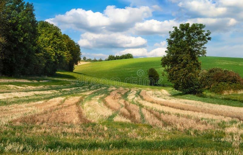 Idyllisch landelijk landschap royalty-vrije stock fotografie