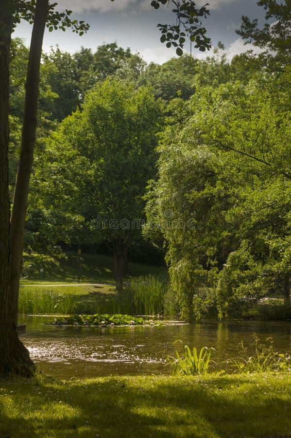 Idyllisch park met meer en fontein in de zomer in heldere zonneschijn royalty-vrije stock fotografie