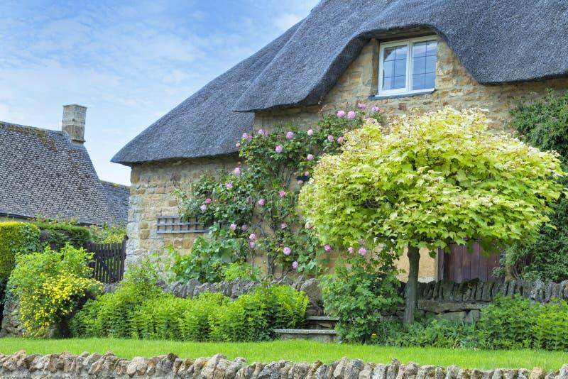 Idyllisch steenplattelandshuisje met groene esdoornboom stock afbeelding