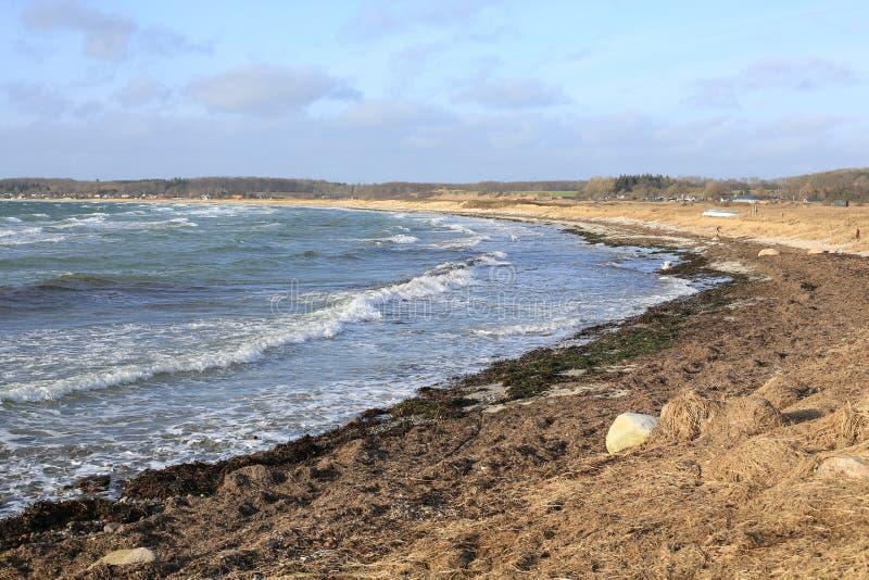 Idyllisch strand op Funen Eiland, Denemarken stock foto