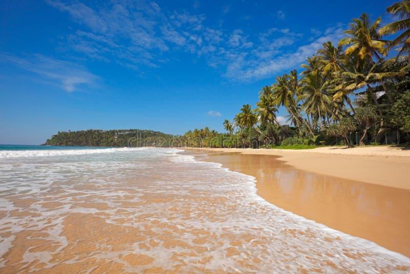 Idyllisch strand. Sri Lanka stock afbeelding