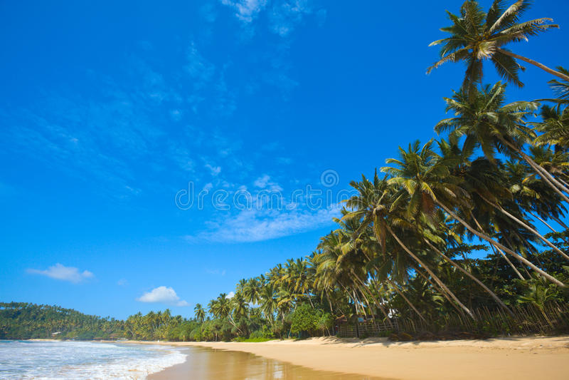 Idyllisch strand. Sri Lanka royalty-vrije stock afbeeldingen