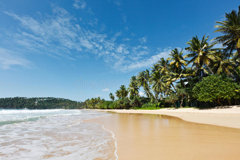 Idyllisch strand. Sri Lanka stock foto