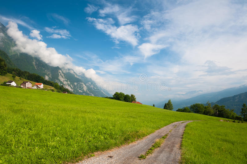 Idyllische alpine Wiese mit Straße. Die Schweiz stockbild
