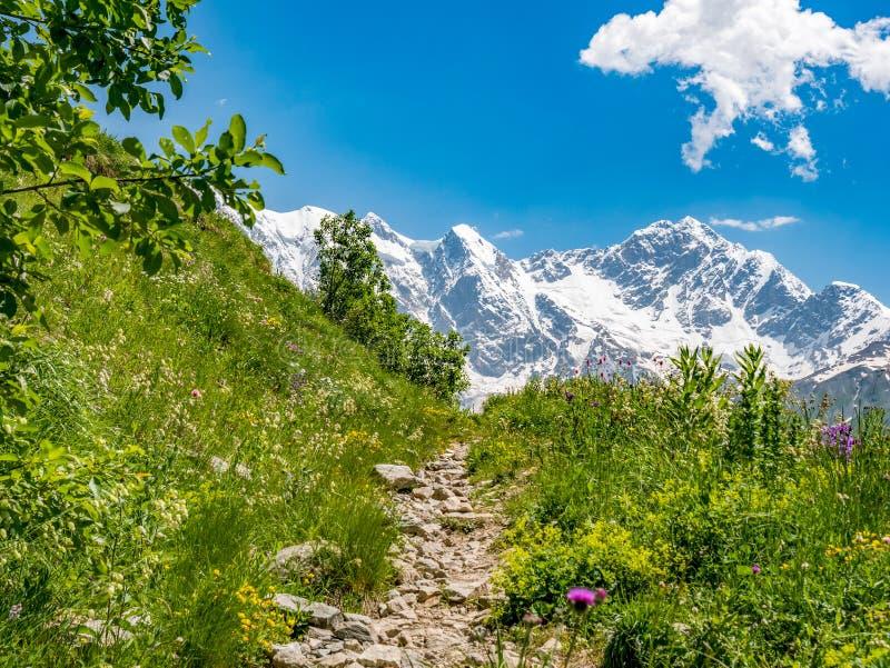 Idyllische Landschaft mit blauem Himmel, Bahn unter grüner Wiese und Spitze des schneebedeckten Bergs Svanetia-Region, Georgia lizenzfreies stockbild