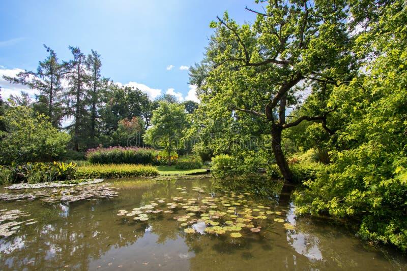Idyllische malerische Landschaftslandschaft Schöner Teich auf einem s lizenzfreie stockfotografie