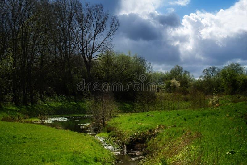 Idyllischer Bach, der eine grüne Wiese mit Bäumen und shru durchfließt lizenzfreie stockfotos