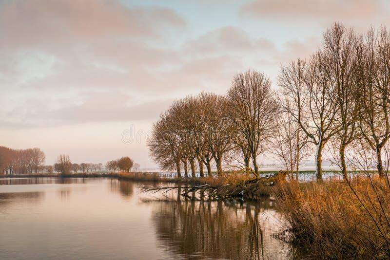 Download Idyllischer See Im Nachmittagssonnenlicht Stockfoto - Bild von reflexion, kalt: 106802304