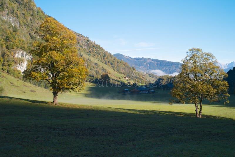 Idyllisk alpin dal med dimmalappar, träd och en lantgård arkivfoton