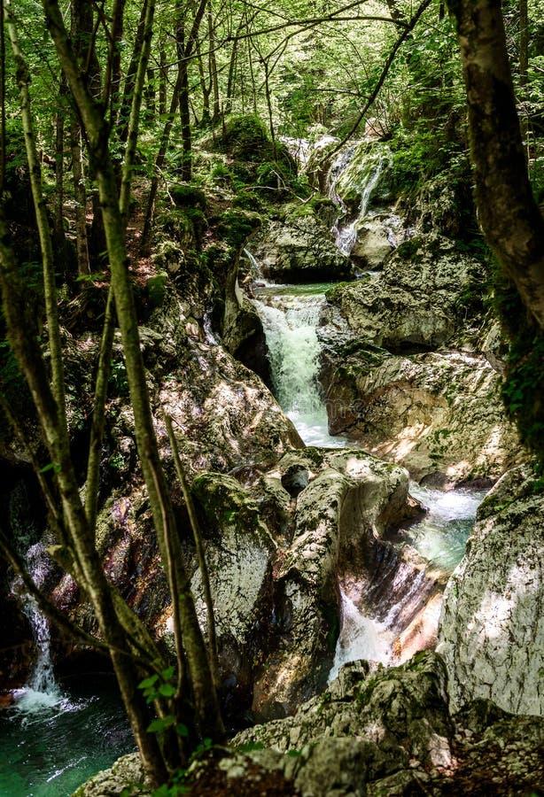 Idyllisk bergflod i den Lepena dalen, Soca - Bovec Slovenien arkivfoton