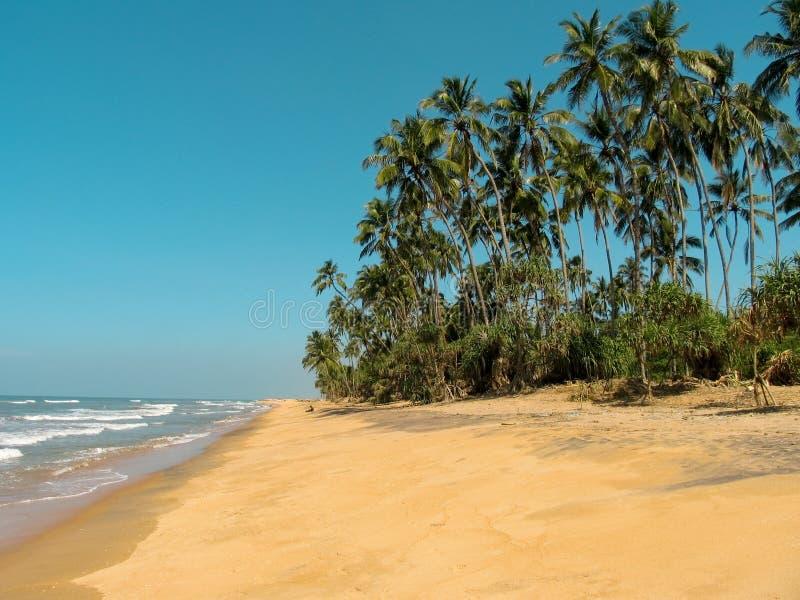 idyllisk lankasri för strand arkivfoton