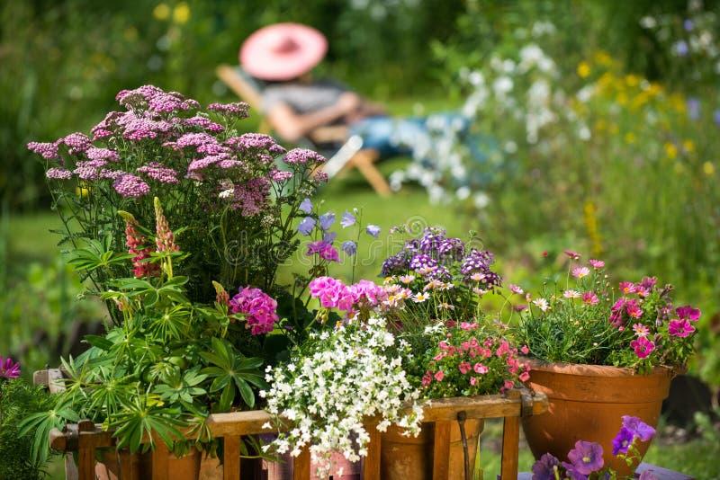Idyllisk trädgård royaltyfria foton