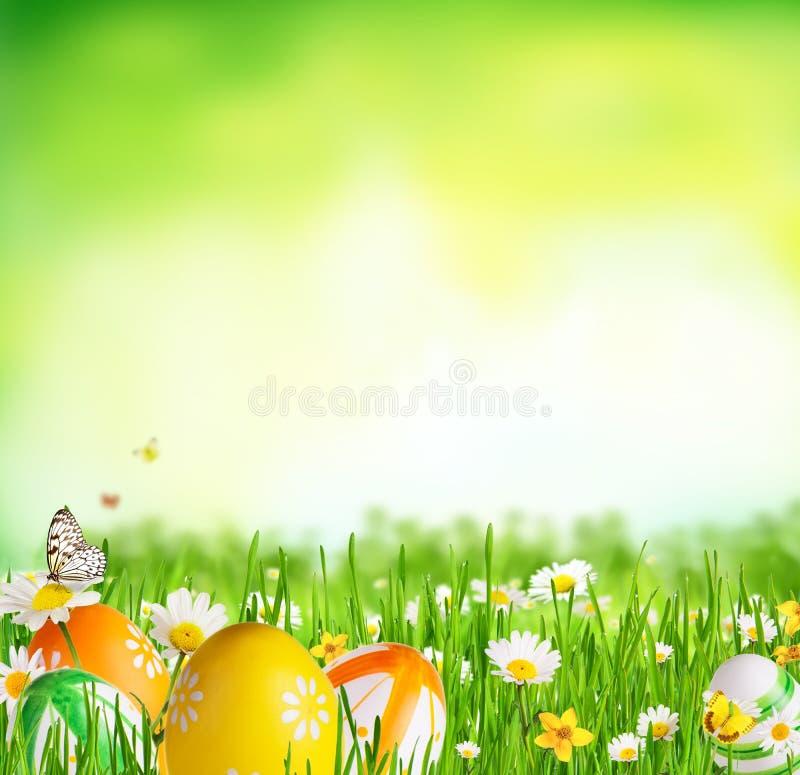 Idyllisk våräng med påskägg och fjärilar royaltyfri fotografi