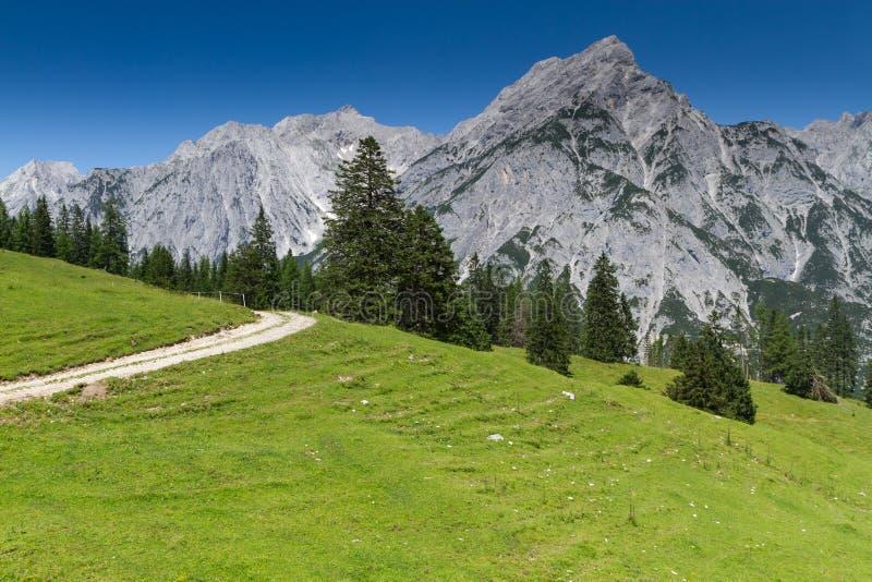 Idylliska Rocky Mountains Scenery Österrike fjällängar royaltyfri fotografi
