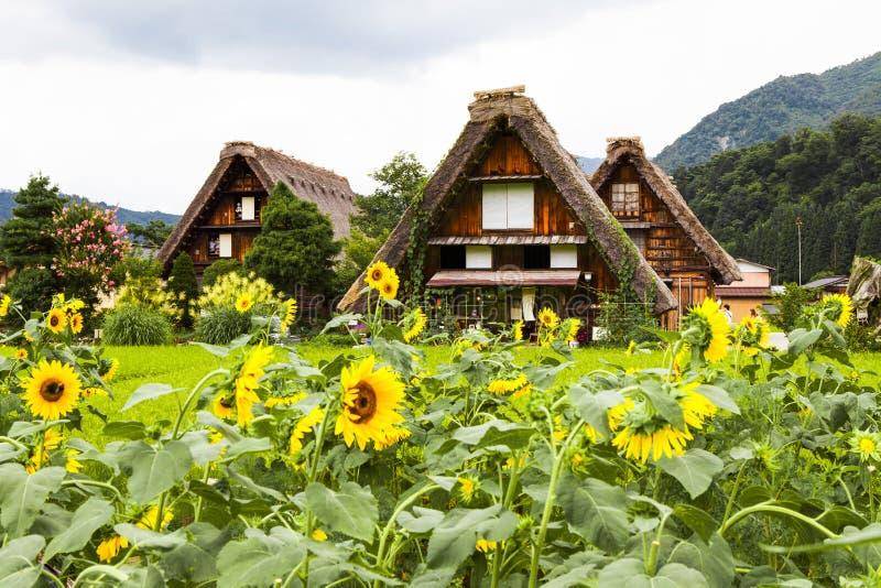 idzie Japan shirakawa zdjęcia royalty free