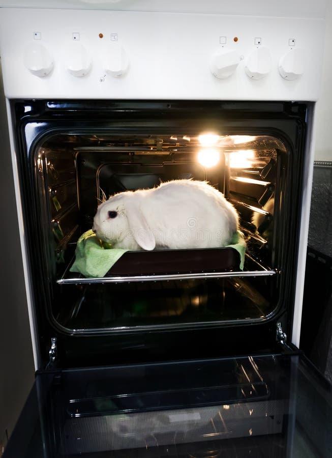 idzie weganin Promocja wegetarianizm, no zabijać zwierzęta dla mięsa obrazy royalty free