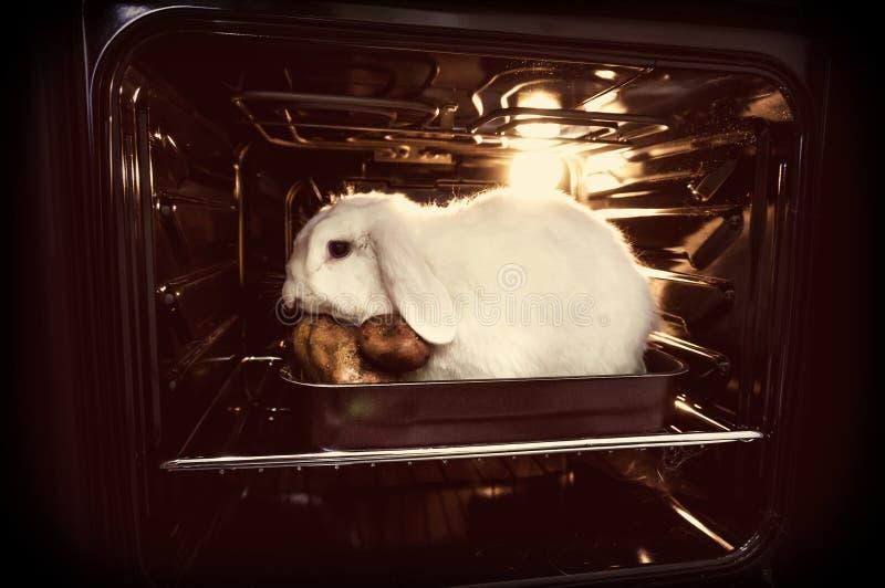 idzie weganin Promocja wegetarianizm, no zabijać zwierzęta dla mięsa zdjęcie stock