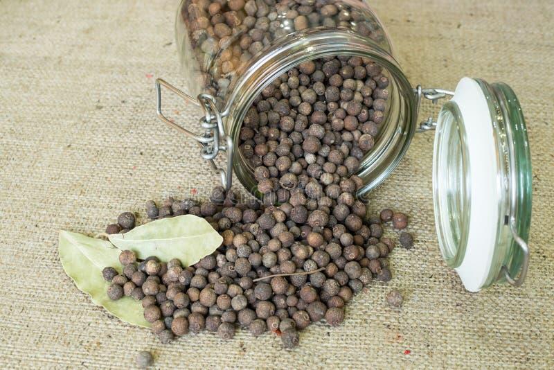 Ienibahar jamaican pepper stock photos