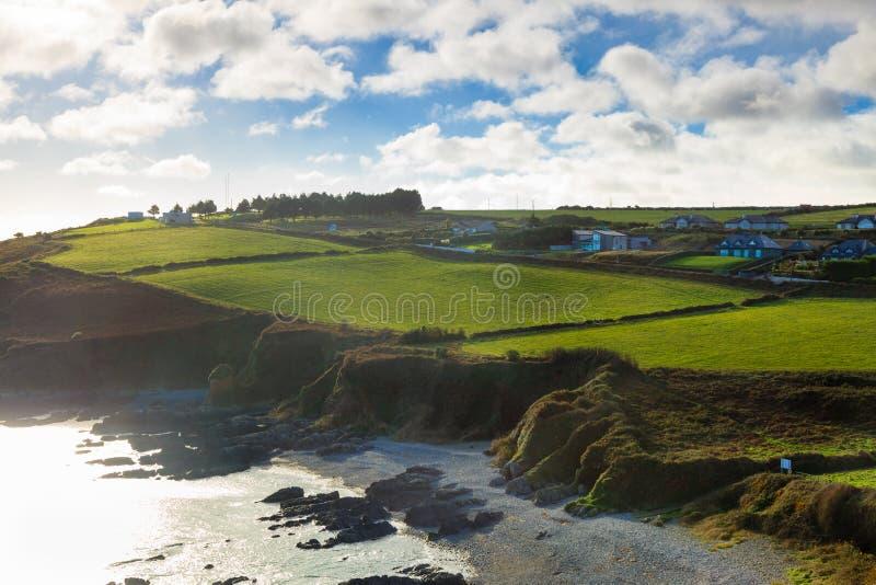 Iers landschap Cork van de Provincie van de kustlijn Atlantische kust, Ierland stock afbeelding