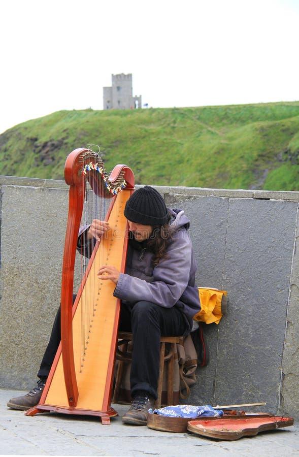 Ierse harpmelodieën voor toeristen stock fotografie